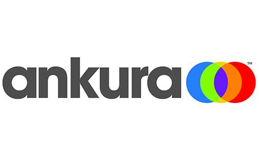 03 Ankura – Silver 2020 sponsor